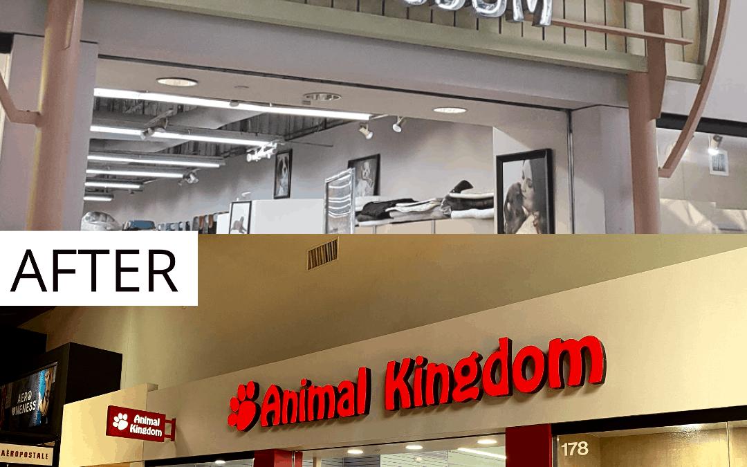 Animal Kingdom Storefront Before & After