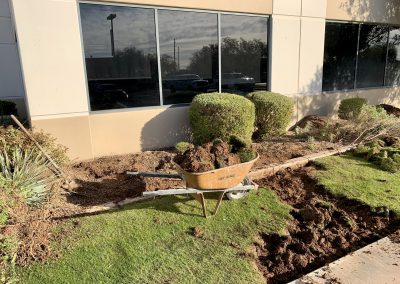 Fusion Power Landscaping