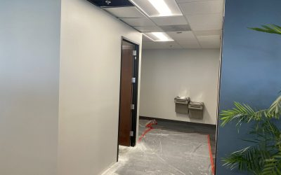 Phase 4 Painting Complete at EMC Insurance (Peoria)
