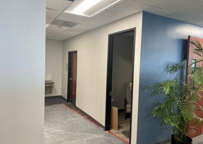 EMC Phase 4 Paint
