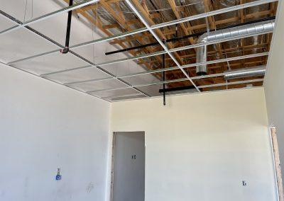 Modern Chiro Ceiling Grid