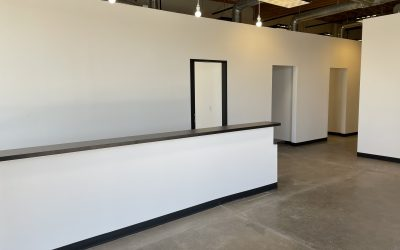 Modern Chiropractic Company Build Out Complete (Chandler)