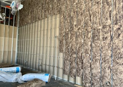 Skinscript drywall and insulation