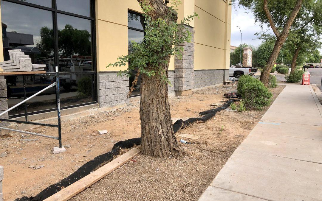Exterior Masonry Veneer Work and Ceiling Tiles at Apple Valley Dental & Braces (Mesa)